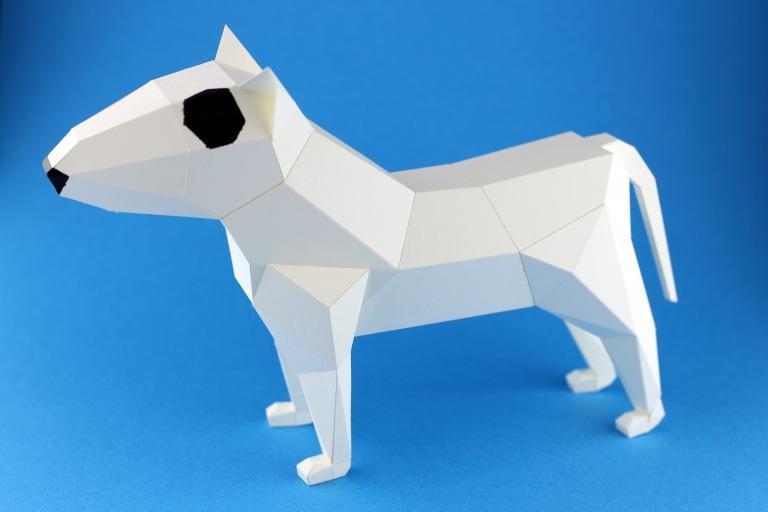 bull-terrier-kc-01-s
