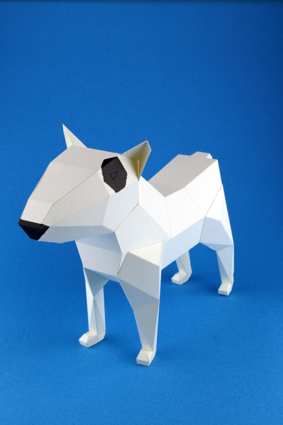 bull-terrier-kc-02