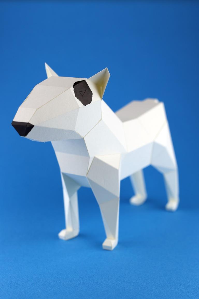 bull-terrier-kc-03-s